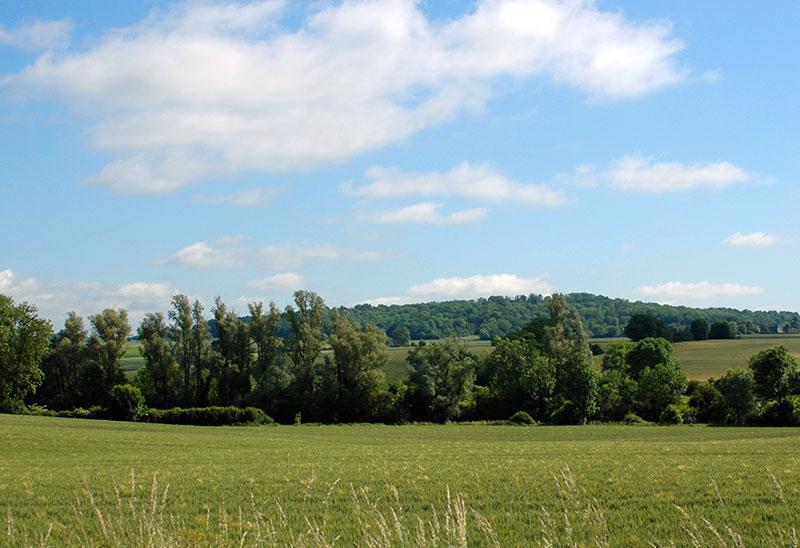 terrain chauconin neufmoutiers
